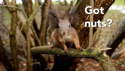 Is Your Family Tree Full of Nuts?